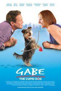 Sevimli Köpek Gabe