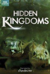 Gizli Krallıklar