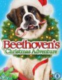 Beethovenin Yeni Yıl Macerası