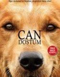 Can Dostum (2017)