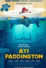 Ayı Paddington 1