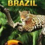 Vahşi Brezilya
